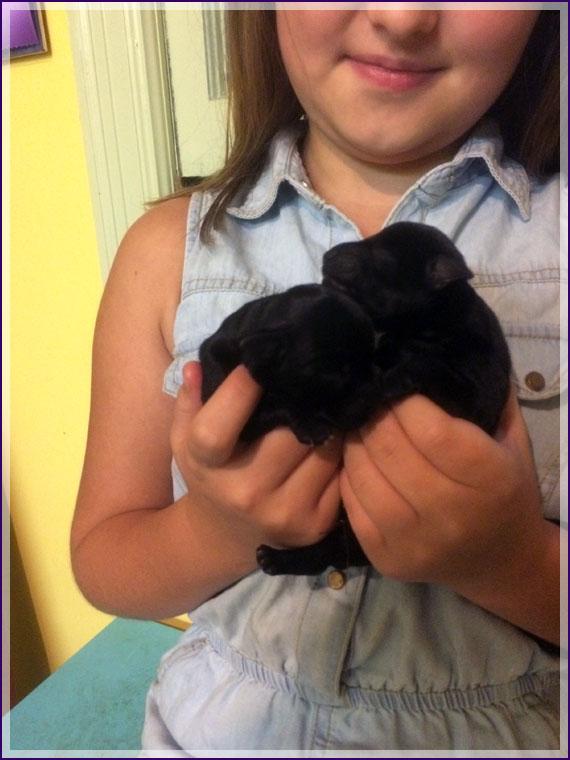 An adorable handful