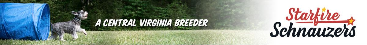 A Central Virginia Breeder